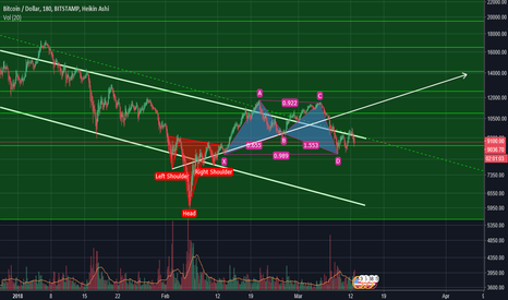 BTCUSD: H&S -> Bullish Bat