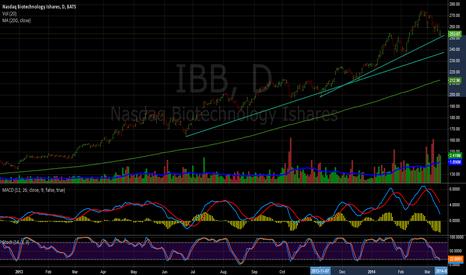 IBB: 2 critical IBB supports