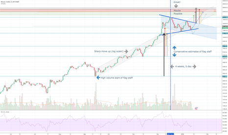 BTCUSD: Developed pennant on one day chart - all fundamentals marked