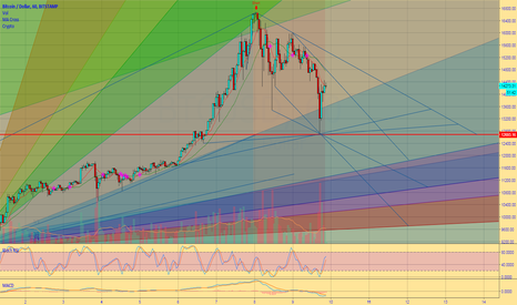 BTCUSD: Bitcoins biggest correction to date? or a platform to 20k?