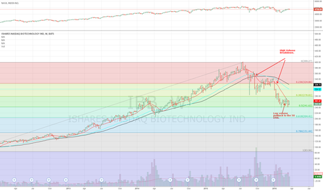 IBB: How To Play The Biotech Bust