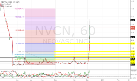 NVCN: our chatroom is open, don't miss out on catching these moves!