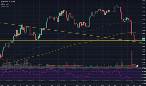 BTCUSDT: Here's hoping for the Bounce