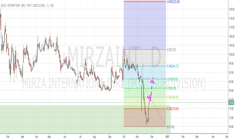 MIRZAINT: Long on Mirza International