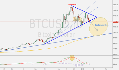 BTCUSD: BTC The big drop