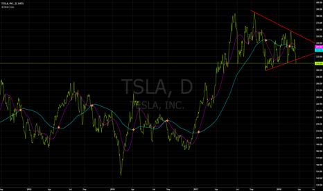 TSLA: TSLA bearish