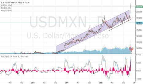 USDMXN: USD/MXN SINCE 1985