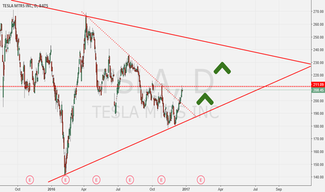 TSLA: TESLA is the future, Theirs still time to join the BULLS