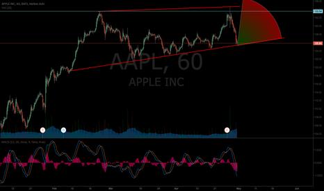 AAPL: AAPL in A Wedge