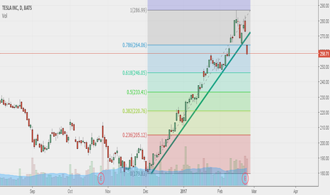 TSLA: Time to sell Tesla! - 1st target at 246 Usd