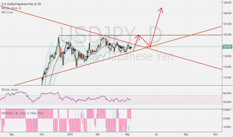 USDJPY: USDJPY  would rise to new high