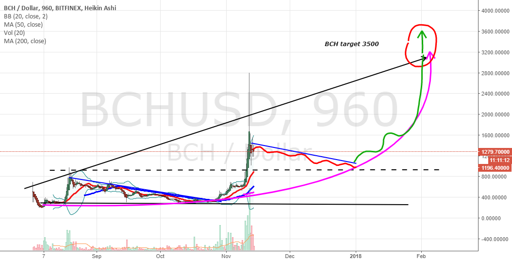 BCHUSD 3 month outlook