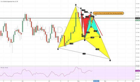 USDJPY: Look For Price To Hit 102.500 Then Shorting Oportunity