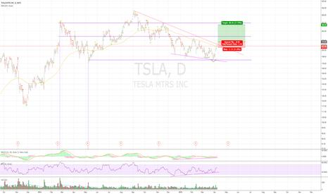 TSLA: Just my plan on TSLA*