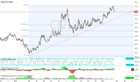 CT2!: cotton-day-rsi-green_short-red_long