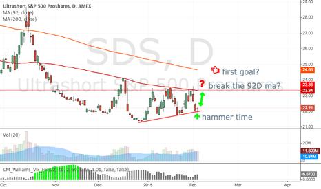 SDS: ultrashort S&P500