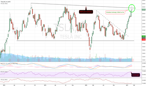 TSLA: Beautiful run, high expectations... Watch out!