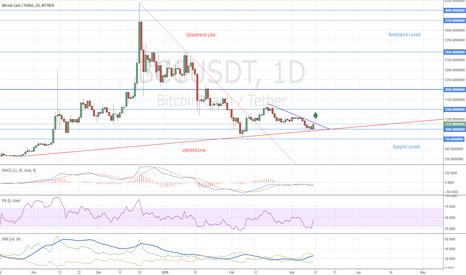 BCCUSDT: Bitcoin Cash Buy Opportunity