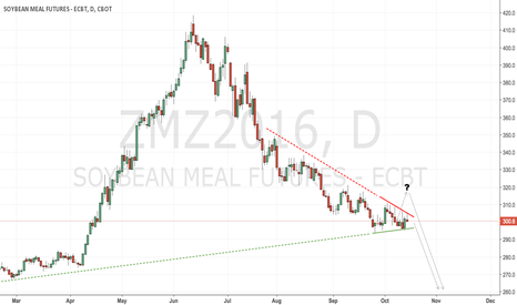 ZMZ2016: CBoT soyameal short remains in force but stops are tightened