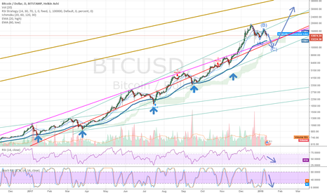 BTCUSD: BTC : Time to Open some Long Positions!
