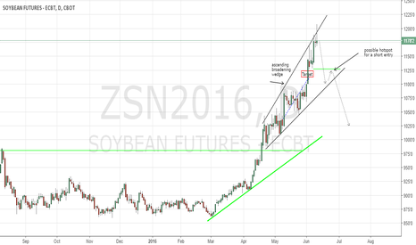 ZSN2016: Soybeans almost ready for a short play