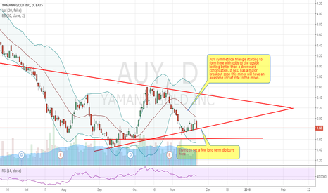 AUY: AUY Dip buying this long term bull miner, this will rocket w GLD