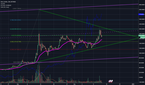 BCHUSD: BCH biggest bullish flag of the decade.