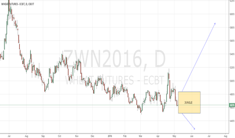 ZWN2016: Wheat No Play yet
