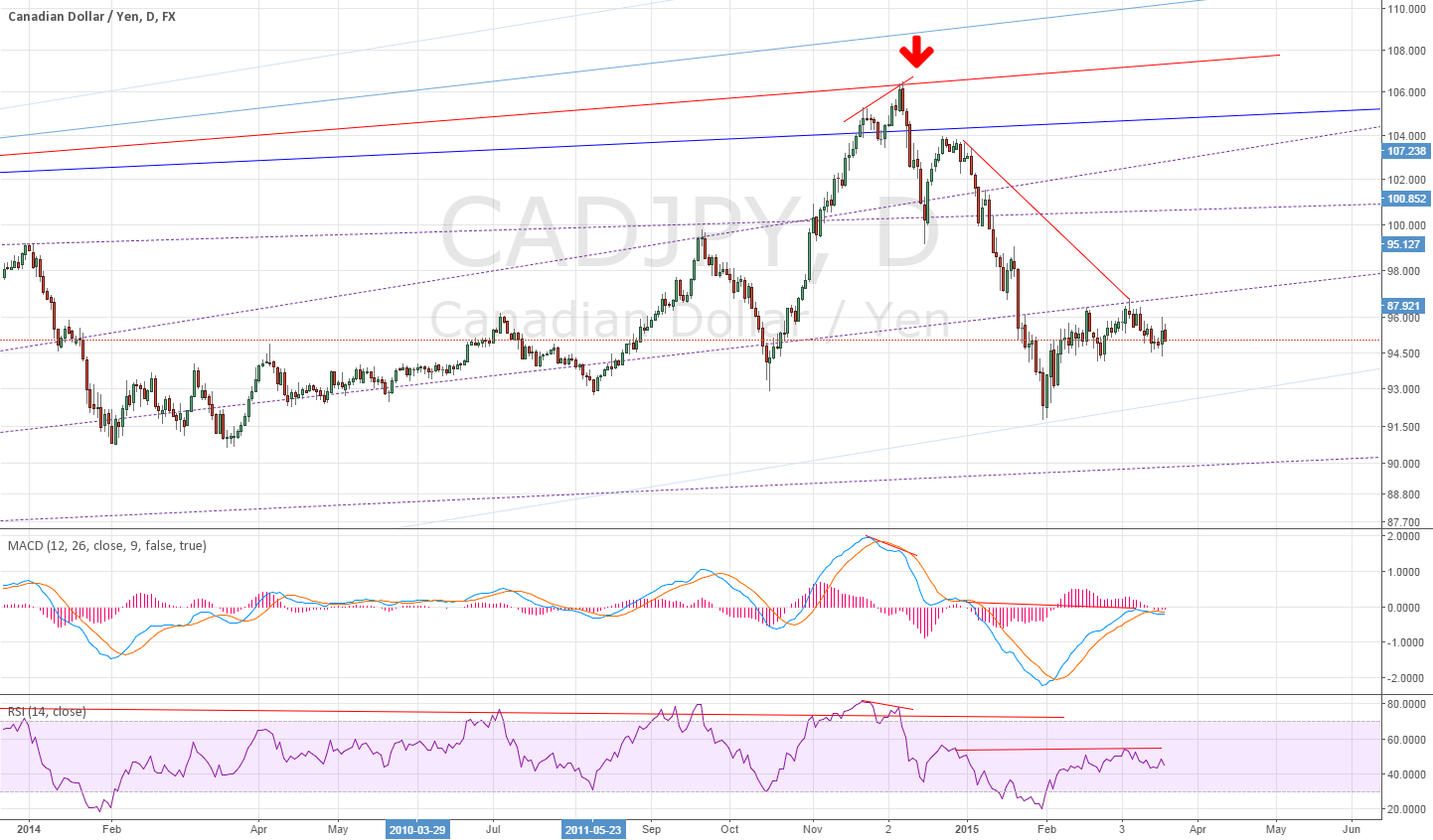 Daily for CADJPY divergence ~