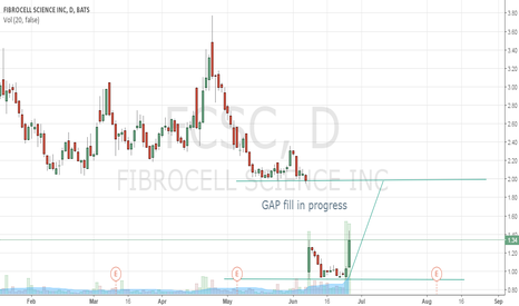 FCSC: Gap Fill In Progress
