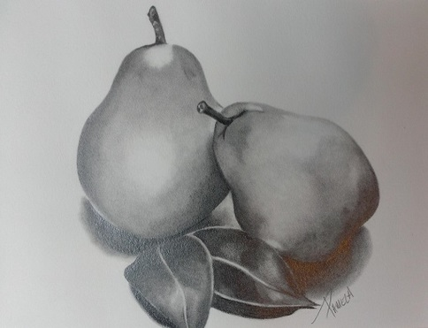 Introduction to Realistic Pencil Drawing Camp