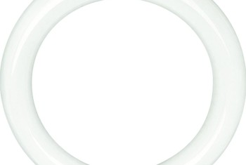 FLUOR.CIRCLINE DAYLIGHT T 9 22 W 6500 K