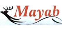 Mayab autobuses