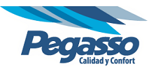 Autobuses Pegasso