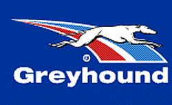 Autobuses Greyhound
