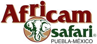 africam safari de puebla