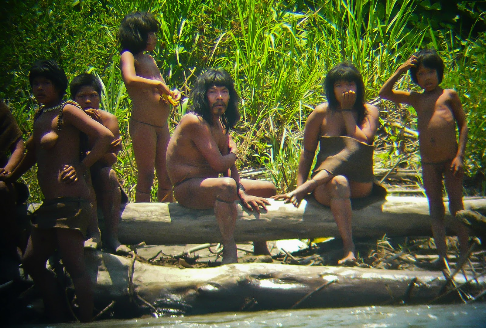 Clip kostenlos jungle sex hentia scenes