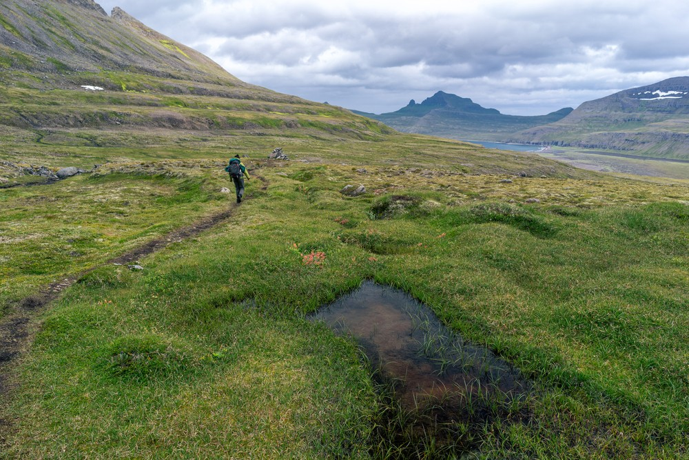 When is the Best Time to Visit Iceland - Hornstrandir