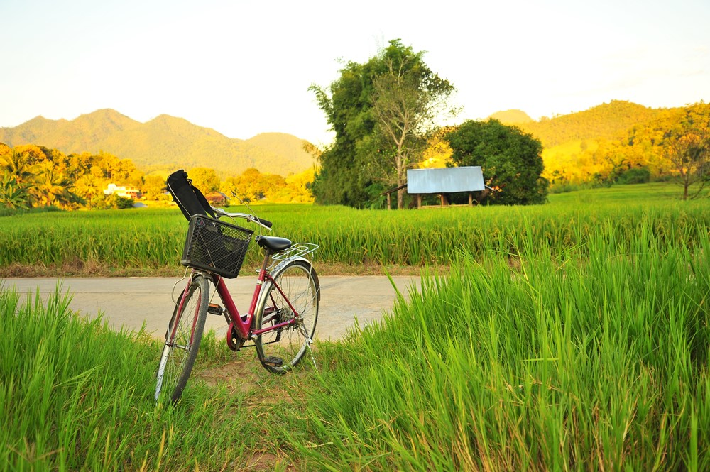 Bali on a budget Transportation