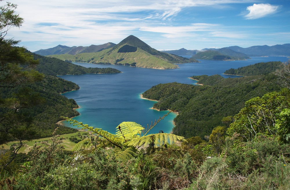 Things to Do in New Zealand South Island - Marlborough Sound