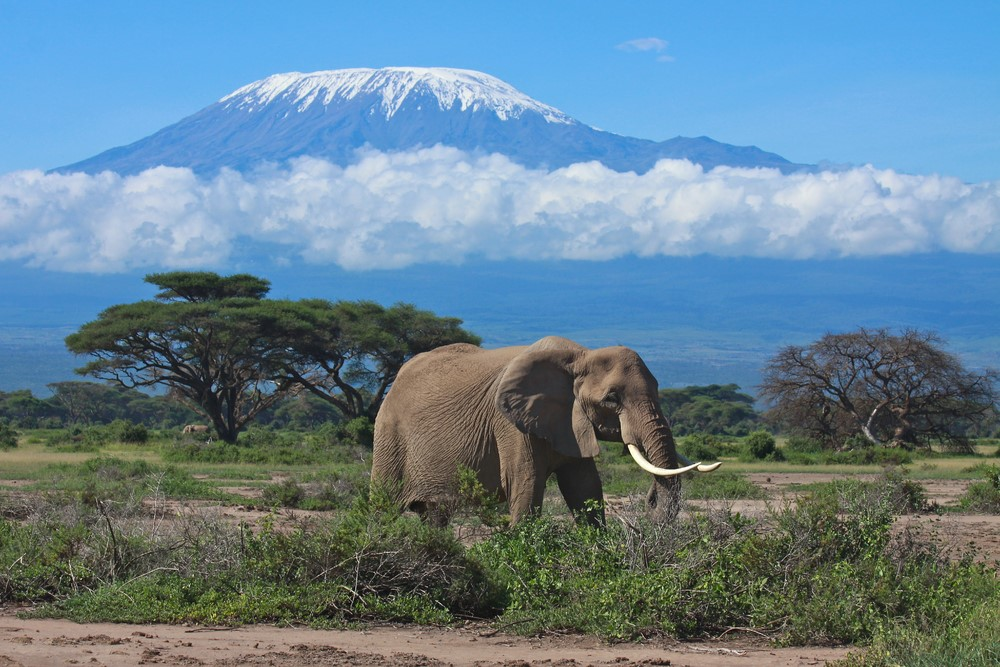 Mind-blowing volcanoes Mount Kilimanjaro, Tanzania
