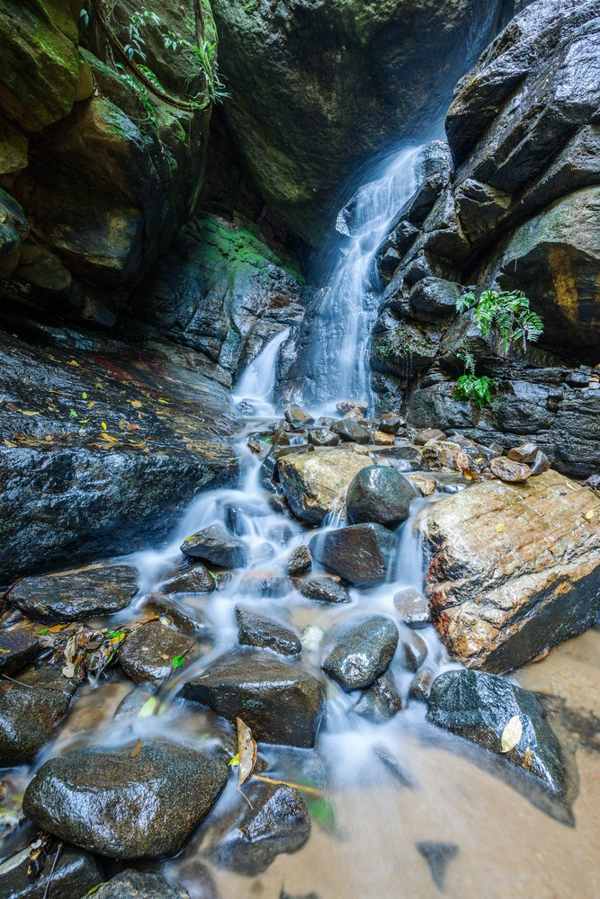What to do in Rio de Janeiro Admire the beauty of the Tijuca National Park