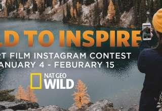 wild to inspire nat geo wild