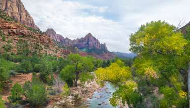 A Trip to Zion Canyon National Park What to Expect