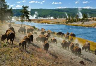 Top 2017 Family Travel Trends Include Exploring National Parks