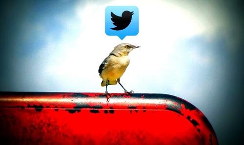 Twitter-Promode-Mode