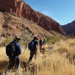 Hiking the Larapinta Trail
