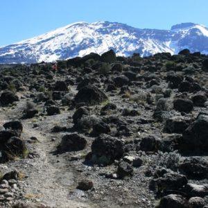 kilisa-Kilimanjaro-Marangu-Route
