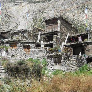 Pisang Village. (1)
