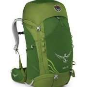 Osprey Ace 75 Kids Hiking Rucksack Backpack - Ivy Green